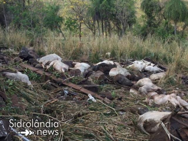 Primeira imagem mostra local logo após o acidente (Foto: Sidrolândia News)