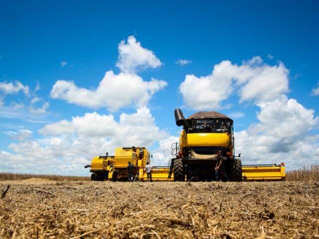 Colheita de soja em MS (Foto: Marcos Ermínio/Arquivo)