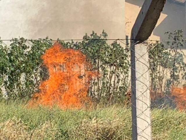 Incêndio em terreno baldio foi registrado na rua Chafica Fatuche Abussafi. (Foto: Direto das Ruas)