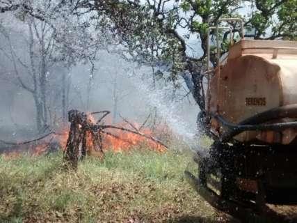 Depois de trégua curta, número de queimadas dispara em 24h