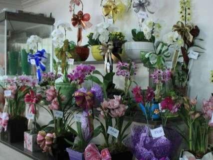 Orquídeas estão mais caras, mas ainda são as preferidas para as mães