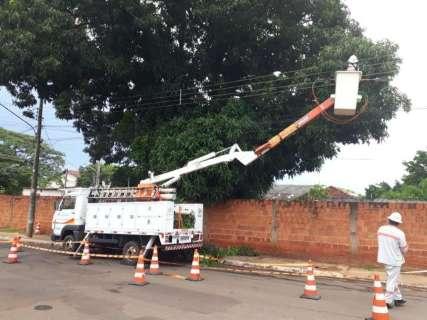 Energisa podou 85% das árvores que tocavam na rede elétrica da Capital