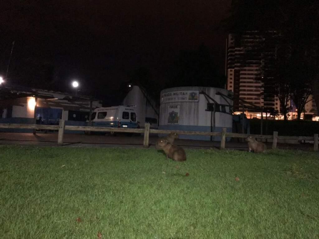 Posto da polícia dentro do parque sem iluminação. (Foto: Direto das Ruas)