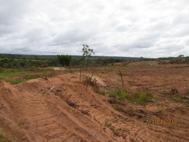 Desmatamento de área na região do Rio Verde causou reações. (Foto: Direto das Ruas)