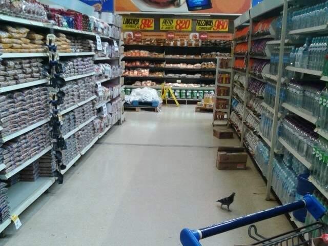 Foto do leitor flagra pombo caminhando pelo corredor do supermercado