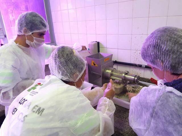 Pesquisadores usaram os equipamentos mais baratos de processamento de carne existentes no mercado (Foto: divulgação)