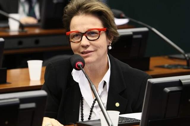 Deputada Tereza Cristina diz que não rumo para atual governo (Foto: Sérgio Francês - PSB)