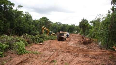 Obra de novo acesso ao Parque dos Poderes vai derrubar 1.222 árvores
