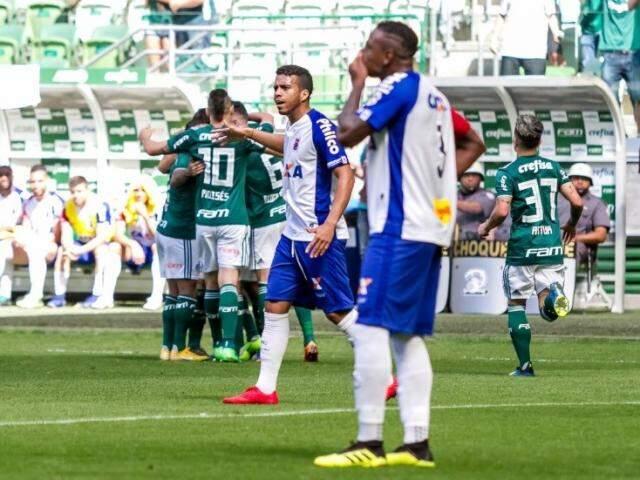 Jogadores do Palmeiras comemoram resultado elástico contra o Paraná (Foto: Divulgação)