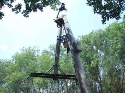 Árvore cai e quebra poste de concreto em avenida de Campo Grande