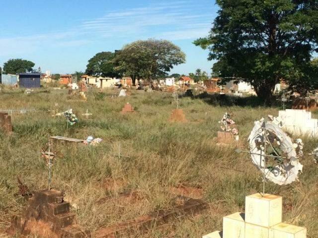Mato alto quase encobre os túmulos do cemitério. (Foto: Direto das Ruas)