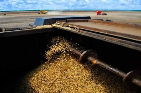 Alta do dólar impacta no preço da soja que valoriza 6,21% em MS, neste mês