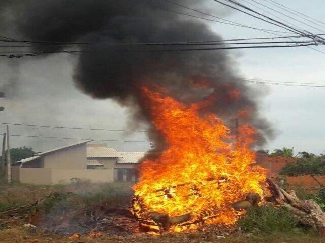 Labaredas altas, quase atingindo a fiação, durante incêndio em terreno no Jardim São Conrado neste ano (Foto: Direto das Ruas/Arquivo)