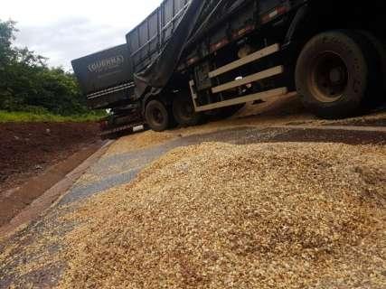 Bitrens batem de frente e carga de soja se espalha pela BR-163