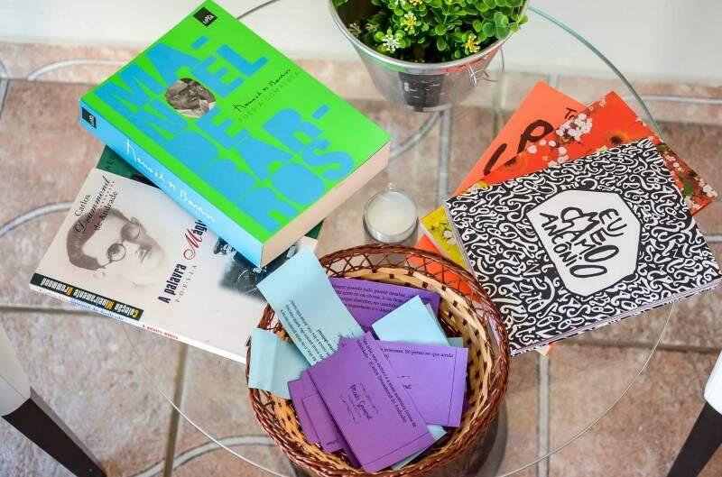 Parte dos livros que Keila trouxe de casa para osw clientes. (Foto: Vanessa Tamires)