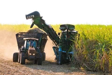 Safra 2016/17  de cana-de-açúcar será aberta oficialmente na sexta