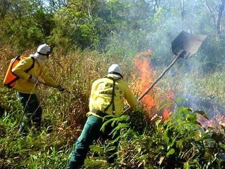 Brigadistas combatem incêndio na área rural de Corumbá. (Foto: divulgação/Prevfogo, divulgada pelo Diário Corumbaense)