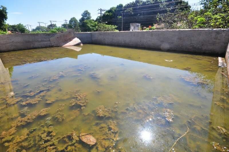 Água parada é o principal criadouro dos mosquitos transmissores da dengue (Foto: Luciano Muta)