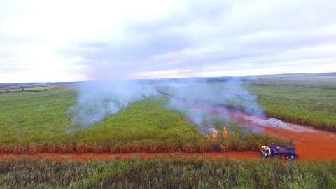 Usina de cana é multada em meio milhão por incêndio em vegetação
