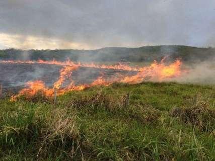MS teve quatro queimadas por hora durante o pior setembro em 10 anos