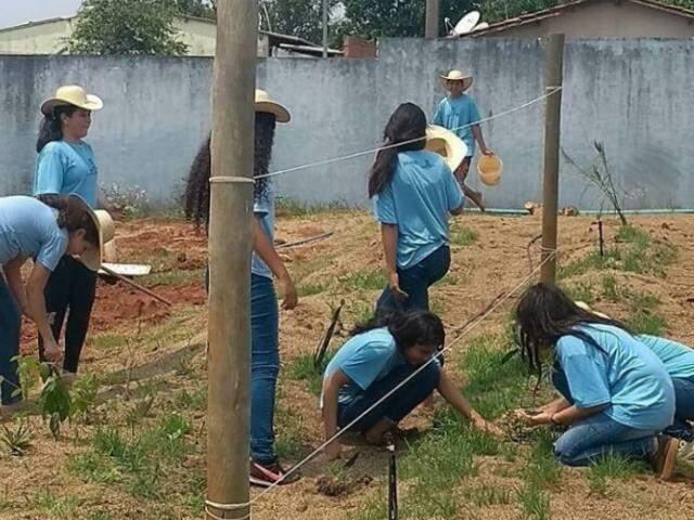 As alunas mexendo no plantio (Foto: Arquivo/escola)