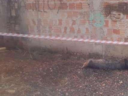 Jovem é encontrado morto com sinais de espancamento na Vila Nasser