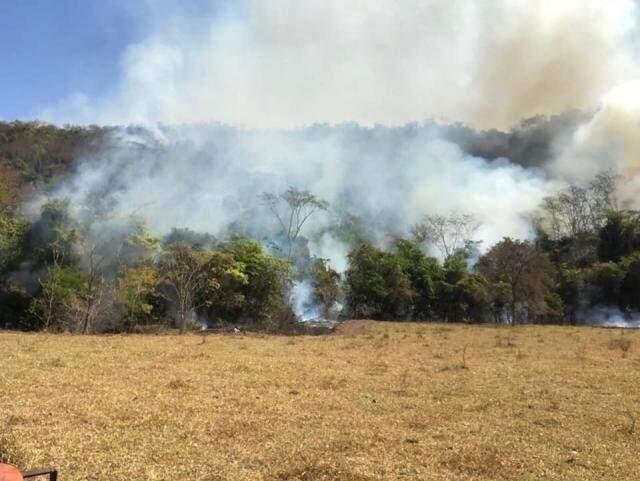 Incêndio florestal em Inocência no mês passado (Foto: Assessoria/ Bombeiros)