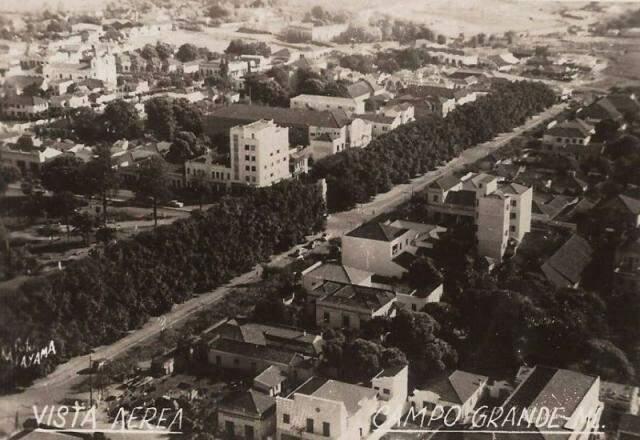 Foto aérea dos anos 1950 mostra a exuberância das árvores.