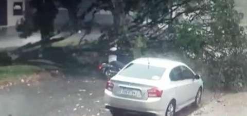 Ventos fortes derrubam árvore em cima de motociclista em movimento