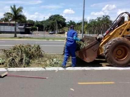 Galhos e restos de poda são removidos de ciclovia pela prefeitura