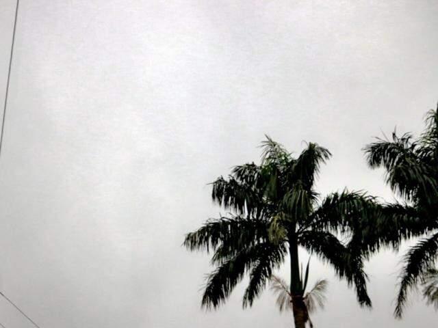 Frio deve ir embora e amanhã as temperaturas voltam a subir no período da tarde na maioria das cidades de MS. (Foto: Henrique Kawaminami)