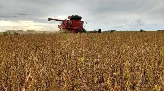 Colheitadeira em plantação de soja em Sidrolândia. Produtores agi8lizam trabalho nos dias de sol. (Foto: Divulgação/ Semagro)