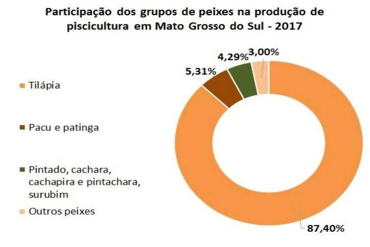 Gráfico mostra que tilápia domina piscicultura em MS (IBGE)