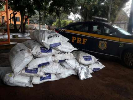 Polícia apreende agrotóxicos contrabandeados avaliados em R$ 1 milhão