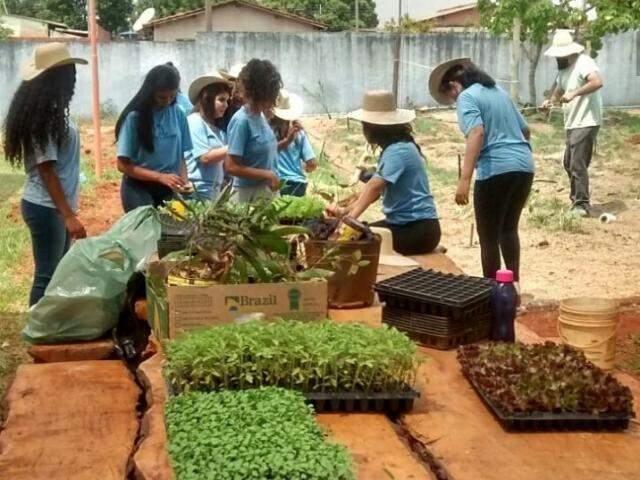 Na horta, as alunas ajudaram a separar as plantas antes do plantio. (Foto: Arquivo/escola)
