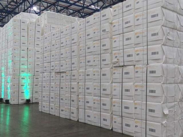 Carregamento de celulose produzido em Três Lagoas; Estado atingiu recorde nas exportações. (Foto: Chico Ribeiro/Subcom/Arquivo)