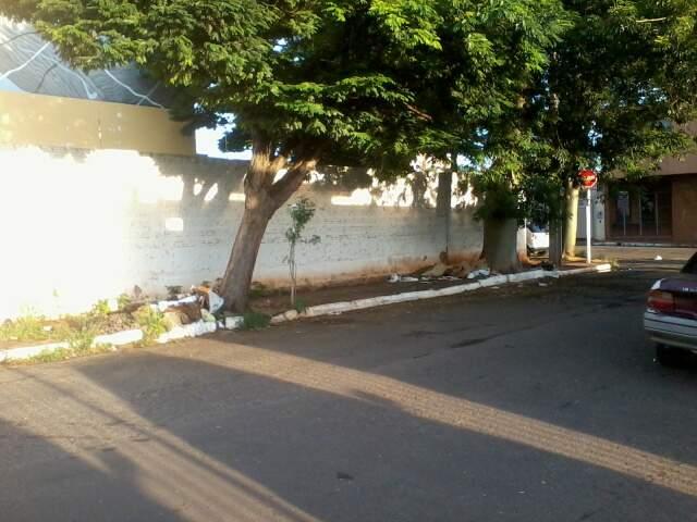 A leitora reclama que os pedestres tem que dividir a calçada com dois montes de sujeira. (Foto: Repórter News)