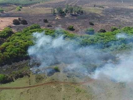 Prejuízo causado por incêndio em fazenda pode passar de R$ 3 milhões