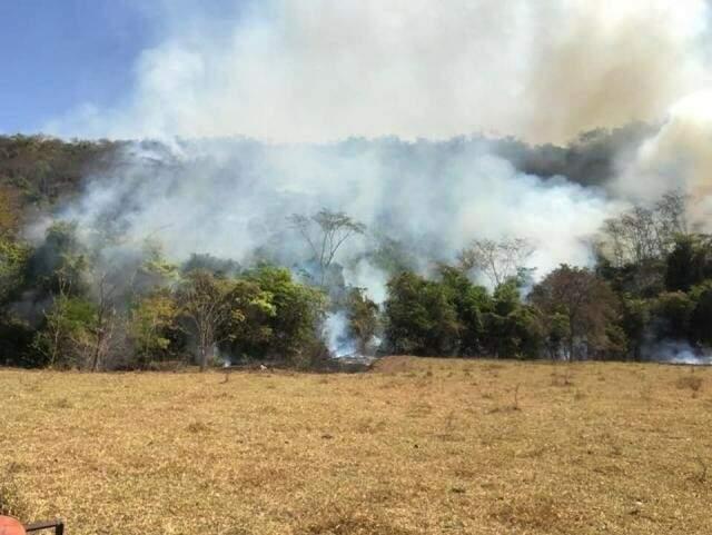 Incêndio florestal em Inocência neste mês (Foto: Assessoria/ Bombeiros)