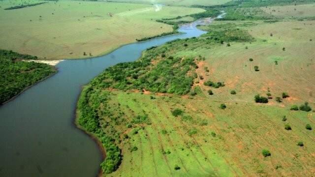 Área de Proteção Ambiental do córrego Guariroba (Divulgação/PMCG)