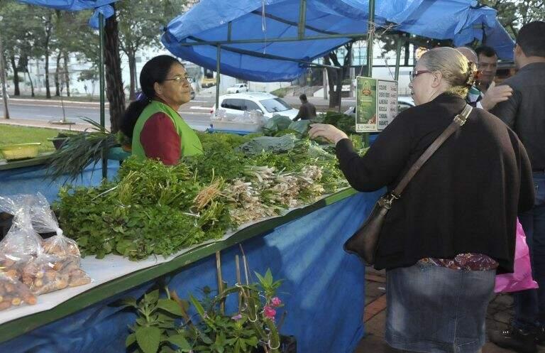 Feirinha de orgânicos na praça do rádio, todas as quarta-feiras à partir das 6h da manhã. (Foto: Néia Macedo)