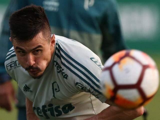 Atacante Willian começará a partida de hoje no time titular (Foto: Cesar Greco/Ag Palmeiras/Divulgação)