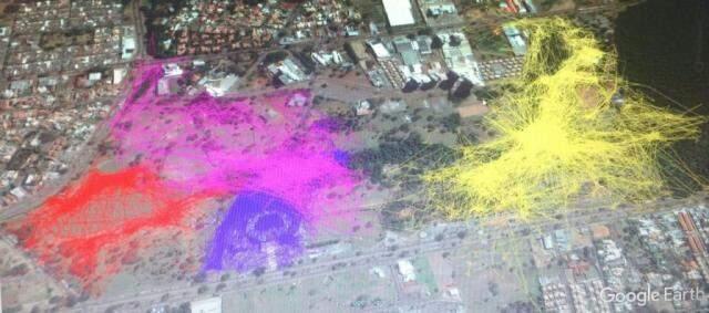 Cinco famílias vivem no Parque das Nações Indígenas. Área coloridas mostram as 'andanças' dos animais. (Foto: Divulgação)