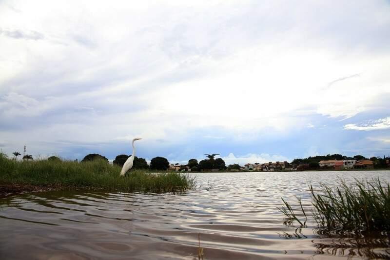 Lagoa Itatiaia, no bairro Tiradentes, é alternativa para ajudar infiltrar água no solo via canais de vegetação