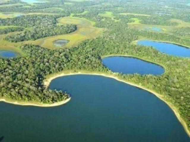 Pantanal não teria condições de suportar cultura, segundo a Biosul. (Foto: Arquivo)