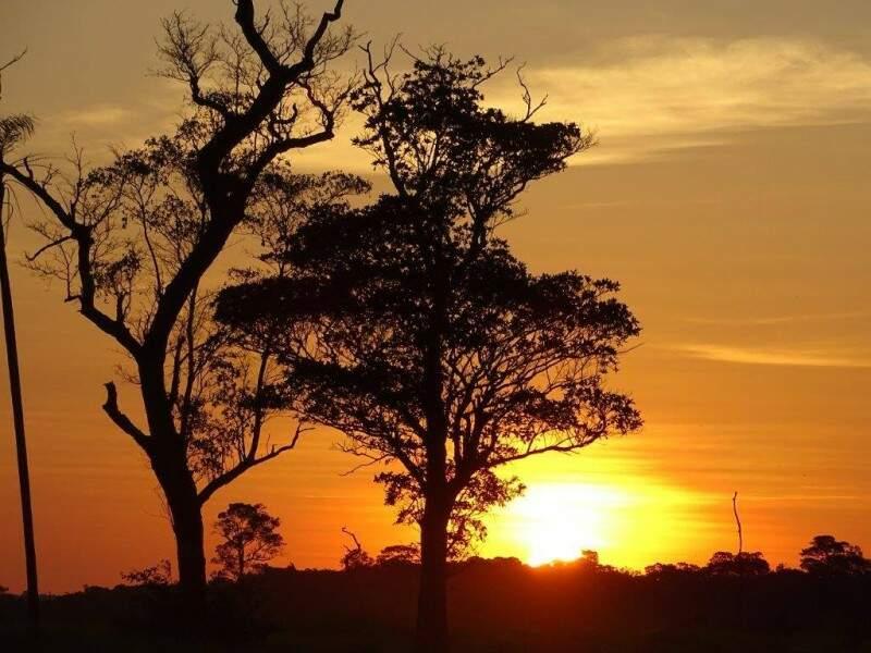 Fim de tarde no Parque Estadual das Várzeas do Rio Ivinhema (Foto: Reginaldo Oliveira)