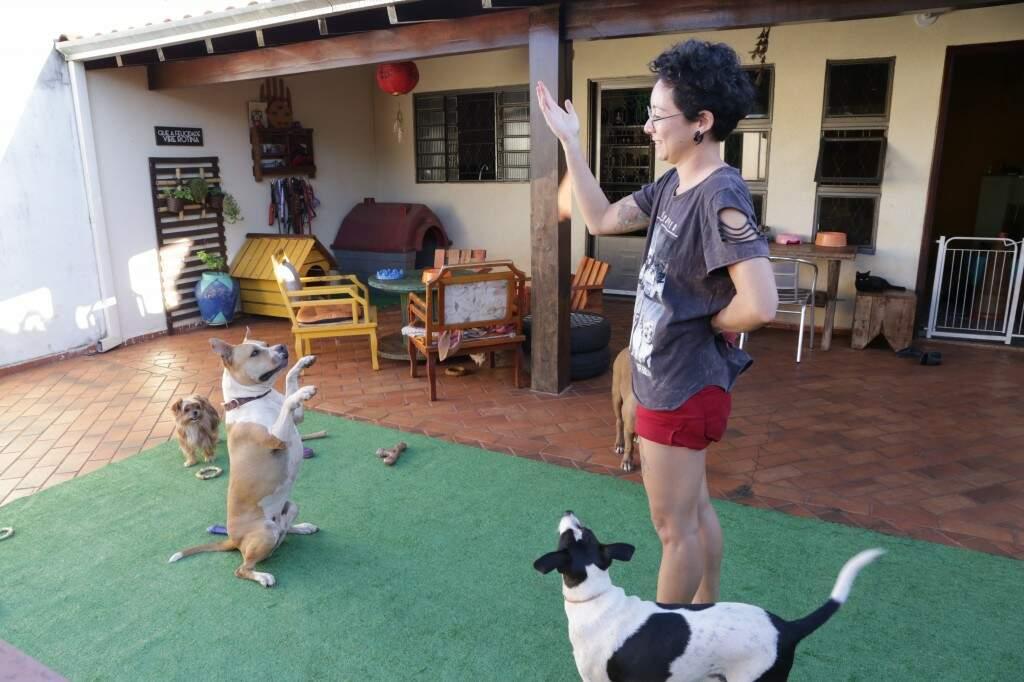 """Carolina treinando Estela, única pitbull do Estado a fazer parte do projeto dos Bombeiros de """"cãoterapia"""". (Foto: Kísie Ainoã)"""