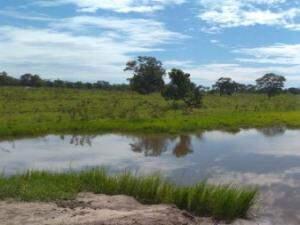 Local onde água da chuva é retida na fazenda da família alves (Foto: divulgação/Senar