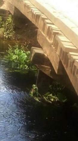 Ponte comprometida na Estrada Parque preocupa produtores rurais