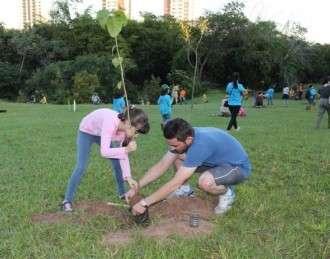 Distribuição de mudas e plantios promovem Dia da Árvore na Capital